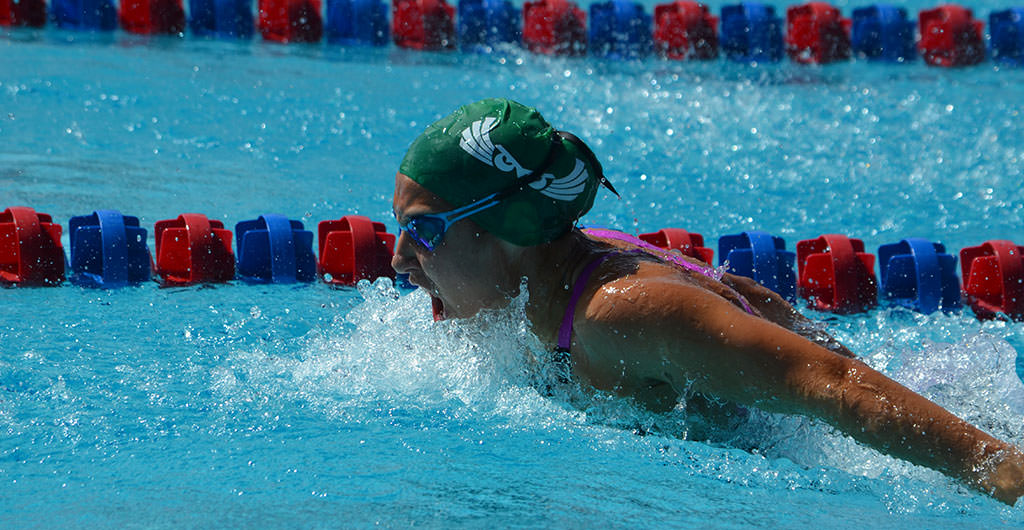 Swimming & Diving 2015-2016 at Mid-Pacific