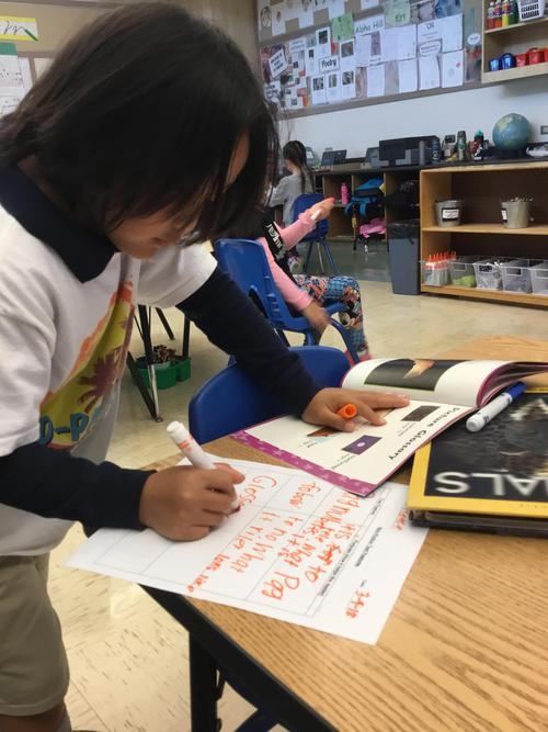 Reading Nonfiction, Reading the World